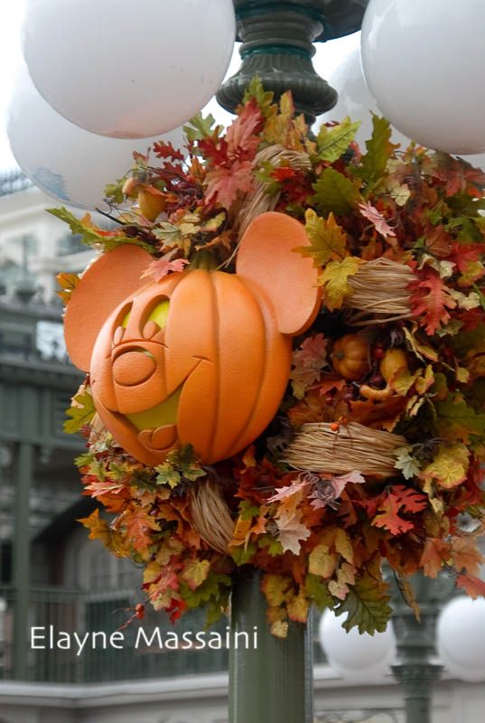Halloween in Magic Kingdom: Photo Elayne Massaini