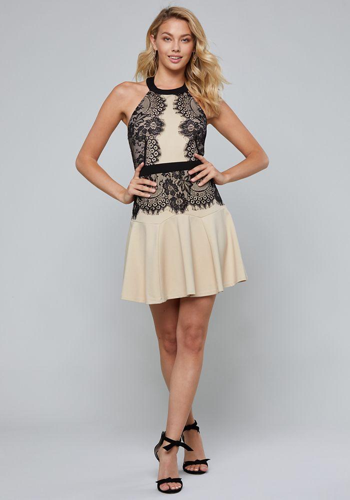 2d8854877d5 Bebe Women s Lace Halter Dress