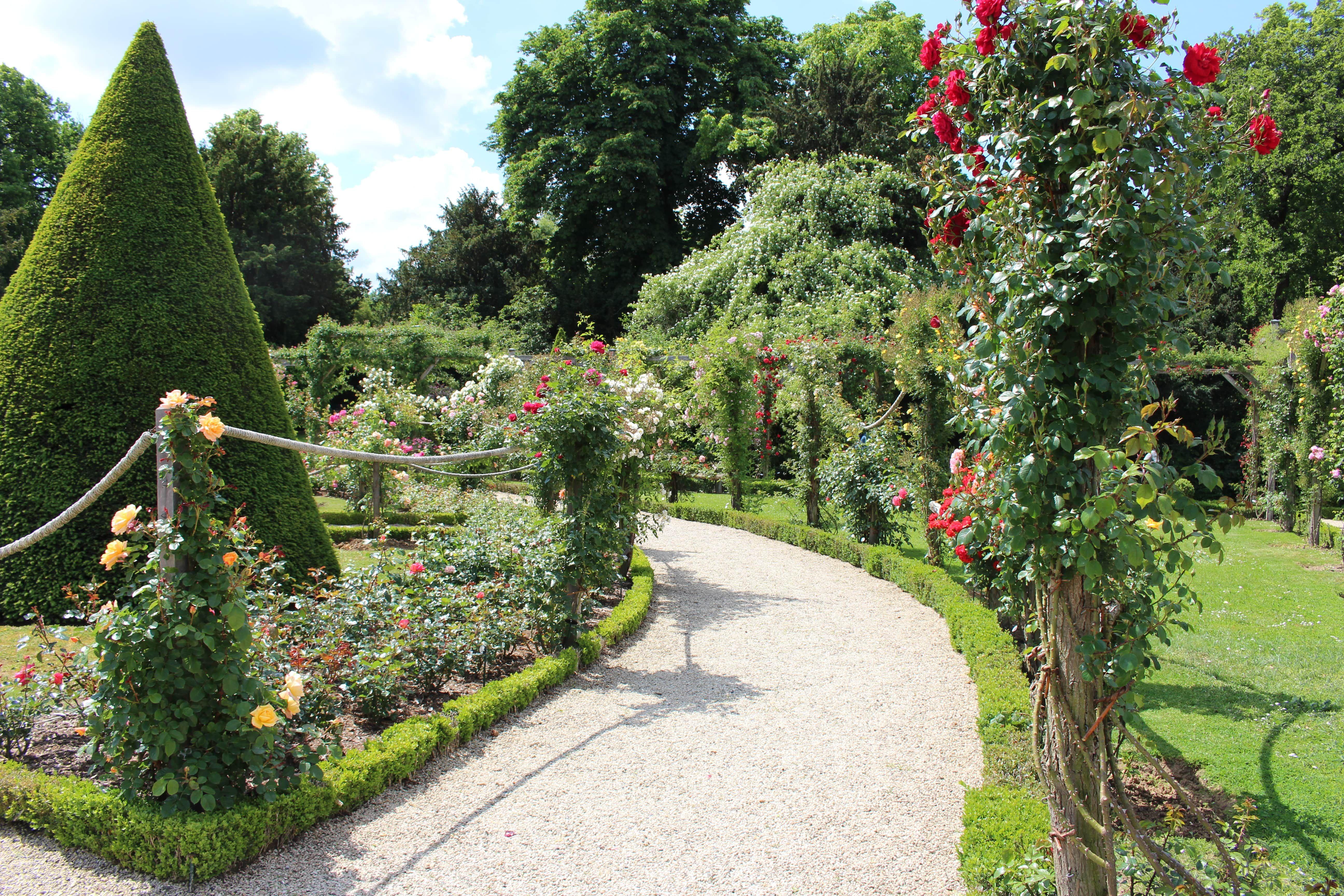 Roseraie Et Magie Des Couleurs A Bagatelle Entree Du Jardin Jardin Bagatelle Jardins