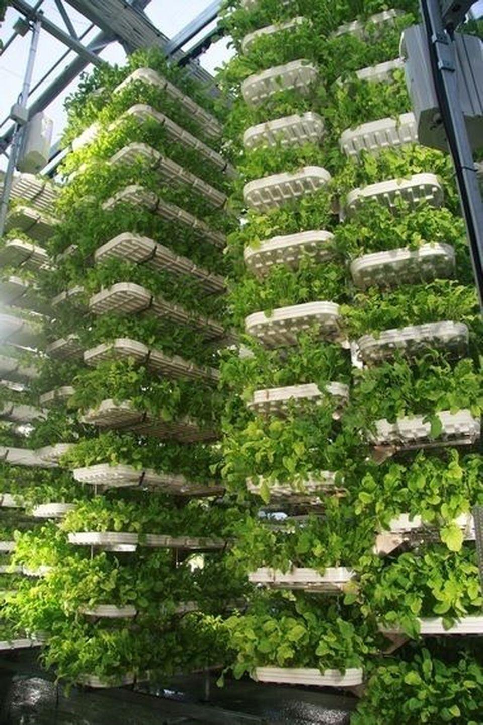 40 Inspiring Vertical Garden Ideas For Small Space Hoommy Com Vertical Garden Vertical Farming Hydroponic Farming,Brown Shades Chocolate Brown Hair Color 2020