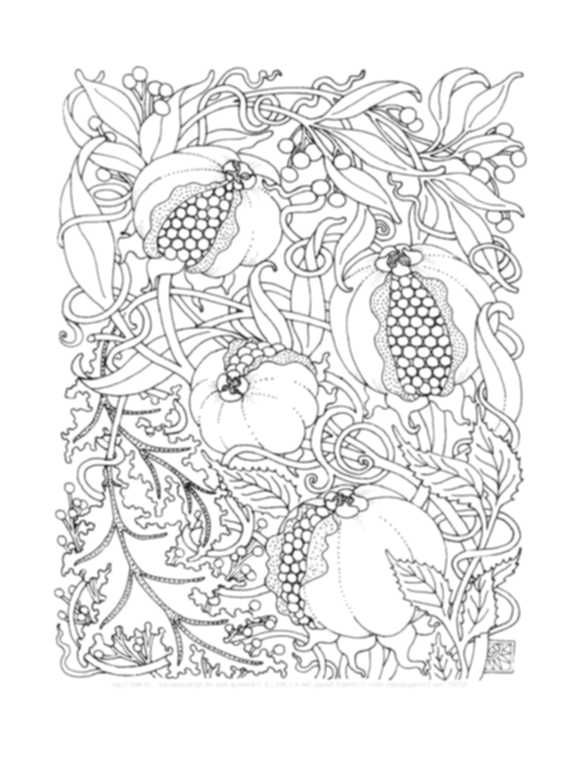 Complex Coloring Pages Fruits | A מנדלות | Pinterest