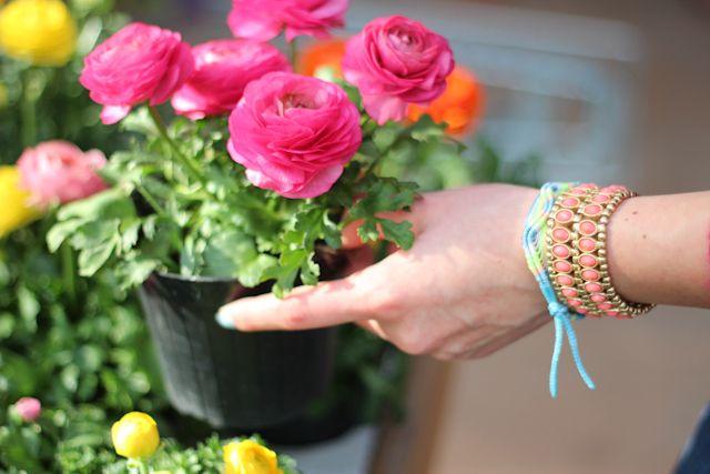flowers and bracelets