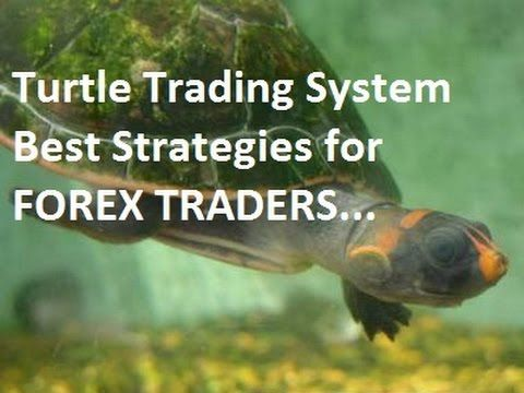 Turtle Trading System - Richard Dennis Best Strategy for Forex Traders