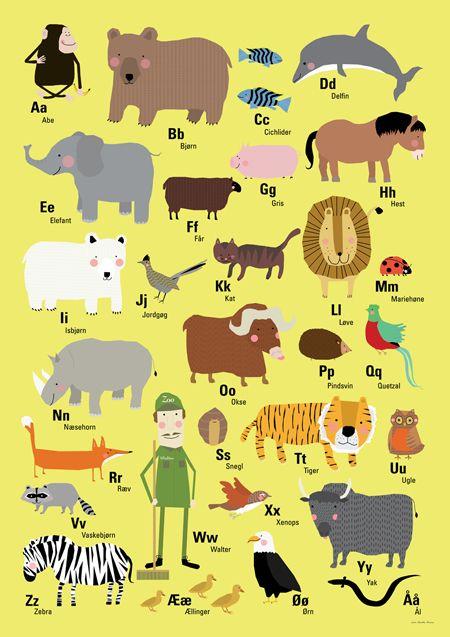dyr med s