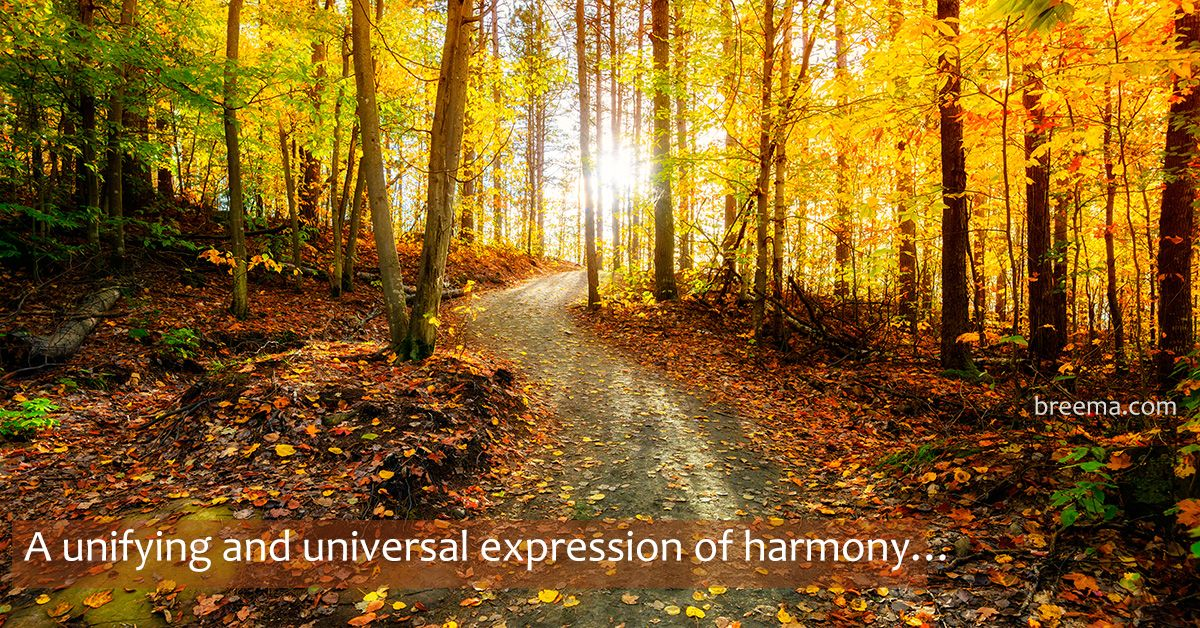 """""""As a unifying and universal expression of harmony, Breema is a light that reaches us at whatever level of consciousness we are in.""""—from Real Health Means Harmony with Existence by Jon Schreiber Listen to the audio excerpt @ www.breema.info/09172019"""