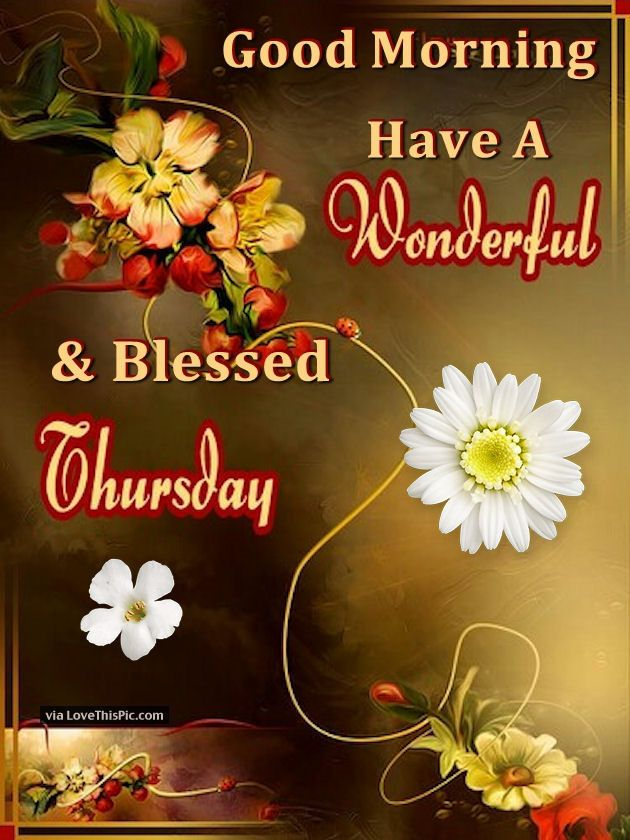 Good Morning Have A Wonderful And Blessed Thursday Good Morning