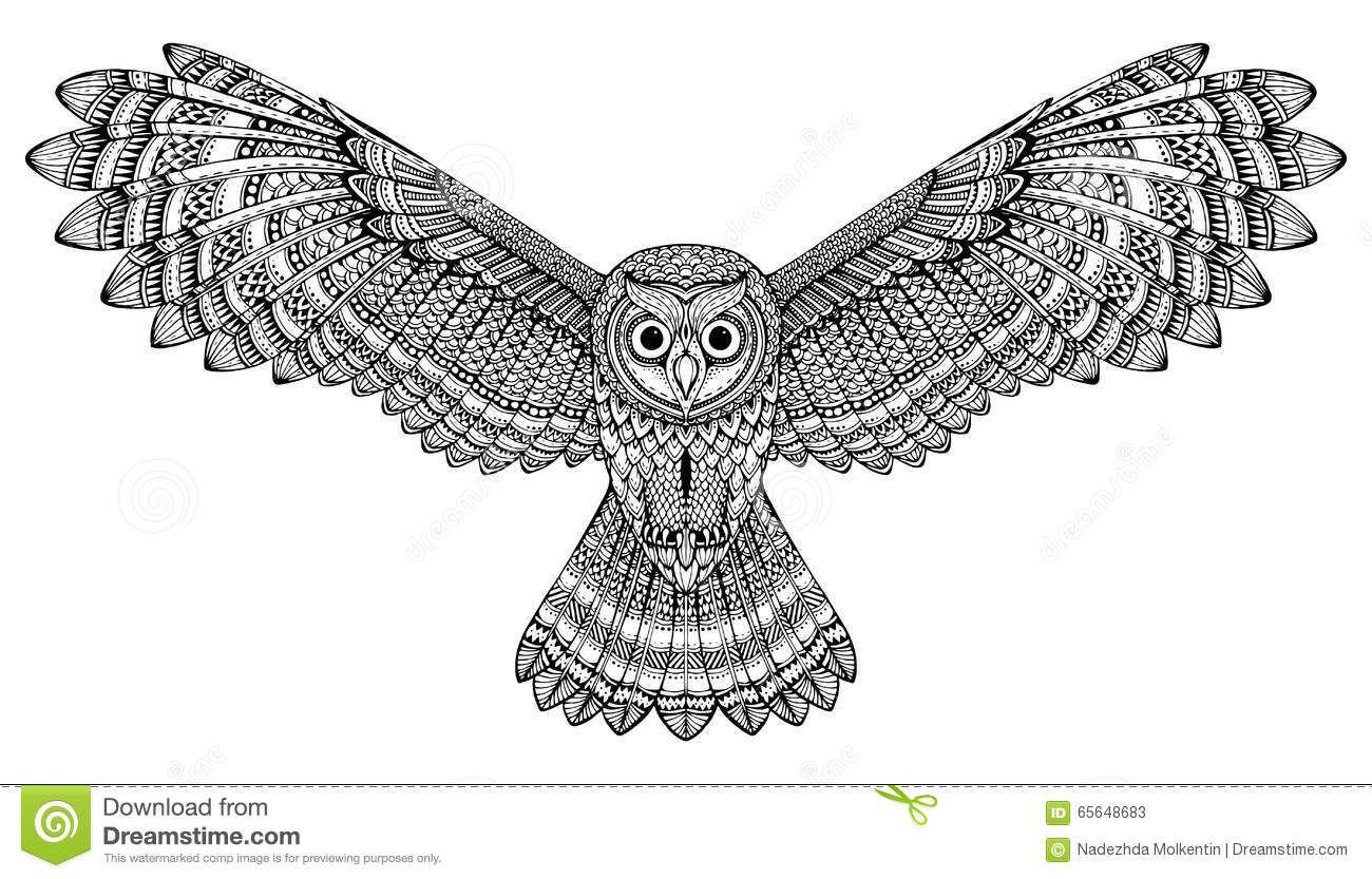 Vector Hand Drawn Flying Owl Black And White Zentangle Art Stock