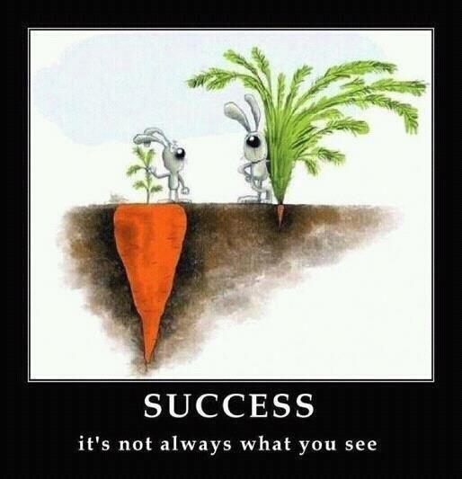Image result for success carrots