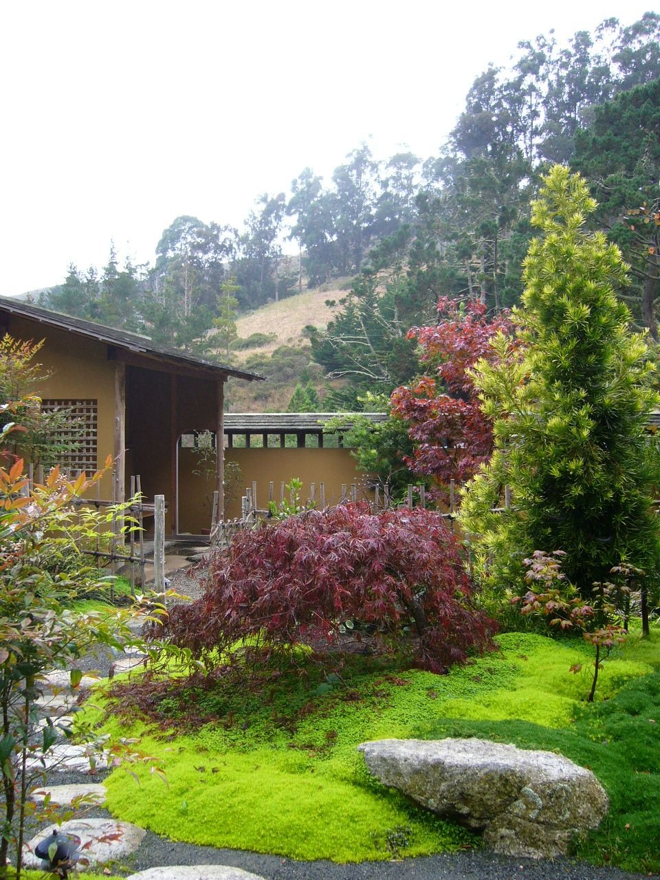 Green Japanese Tea Garden, japanese tea gan san francisco