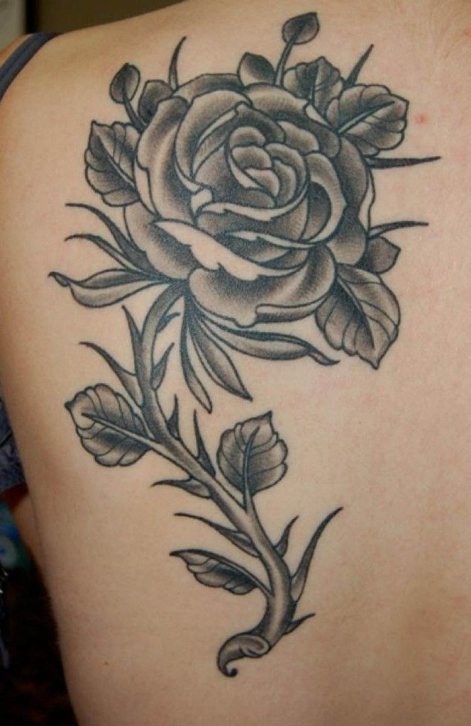 Disenos De Tatuajes De Rosas Negras Tatuajes De Rosas Tatuajes De Rosas Para Hombres Tatuajes De Tinta Negra