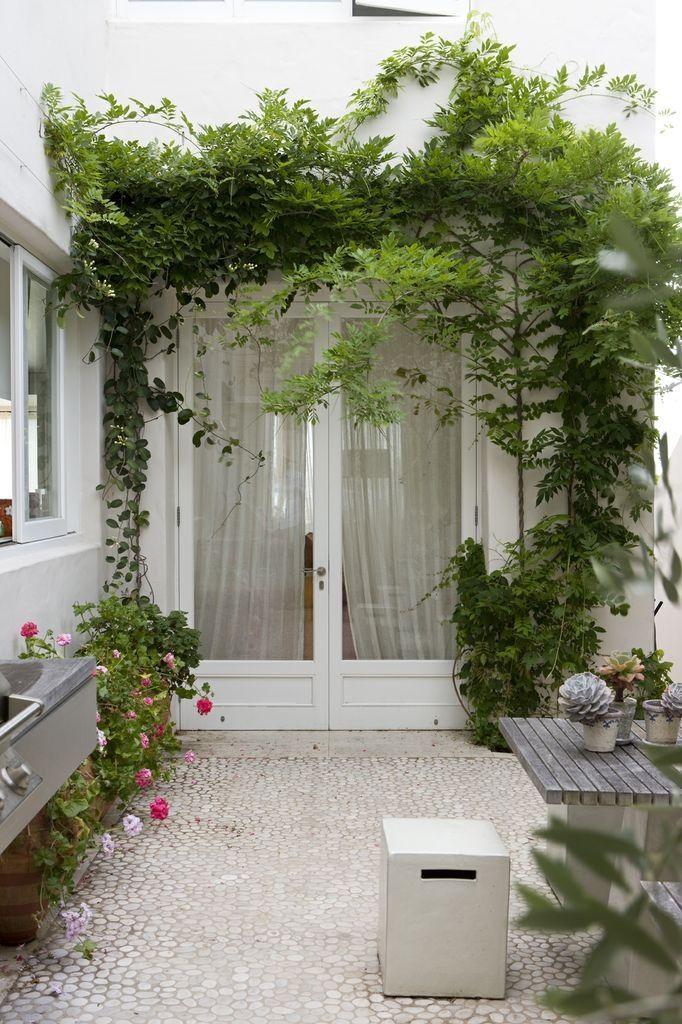 Kitchen courtyard Garden by peter fudge