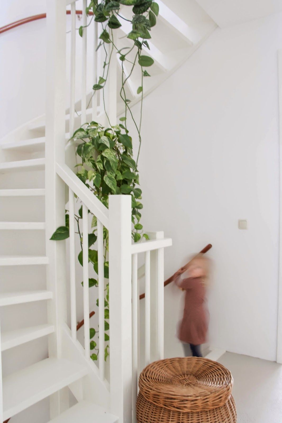 Hangplant Slaapkamer I Love Having The Hanging Plant In The Stairwell I Think Having