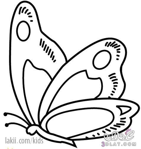 رسومات متنوعة للتلوين رسوم للاطفال للتلوين صور للتلوين 3dlat Net 28 16 27ce Coloriage Comment Dessiner Un Papillon Modele De Papillon