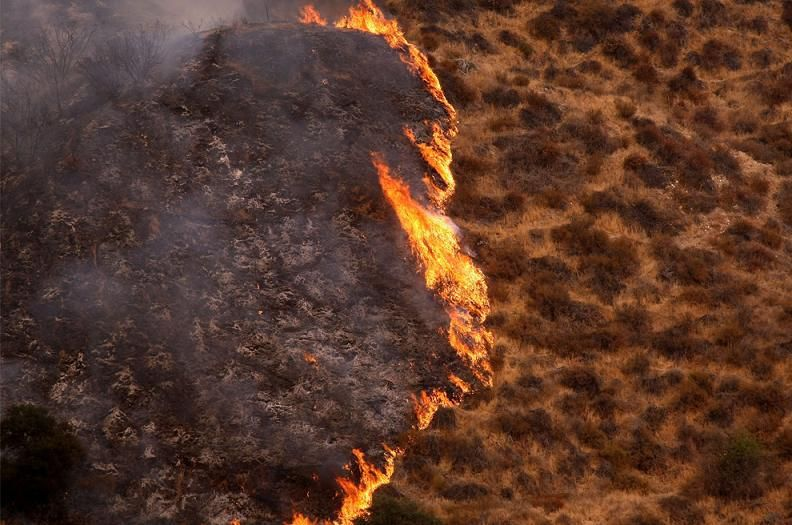 Nature S Fury 30 Chilling Photos Of Natural Hazards Brush Fire Natural Disasters The Incredibles