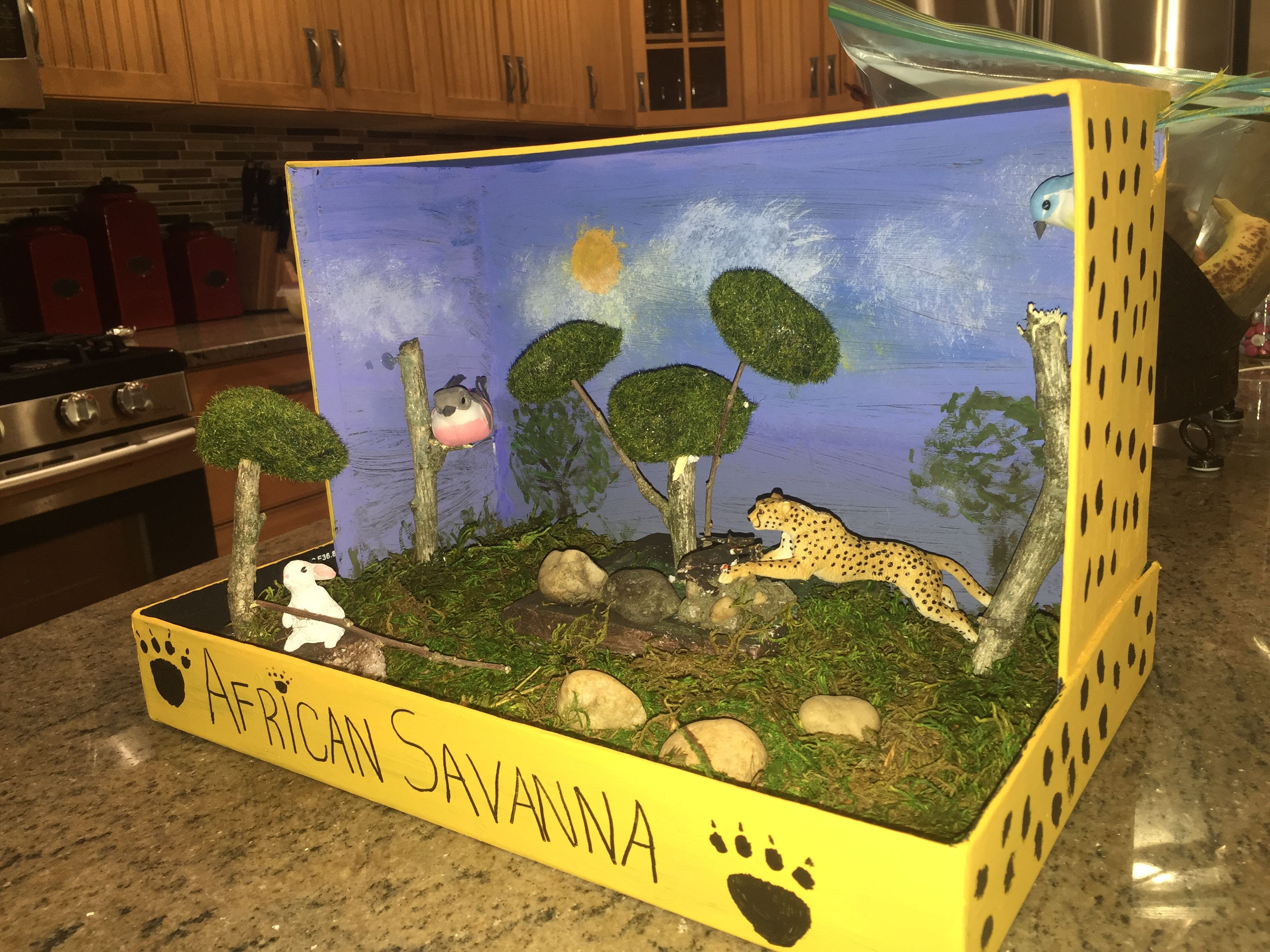 Diorama of cheetahs 39 habitat do it yourself pinterest for Do my project