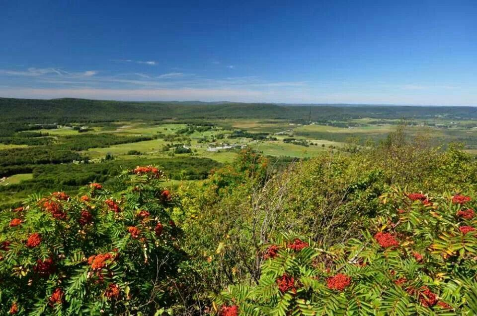 Canaan Valley from Bald Knob in West Virginia By Ed Rehbein