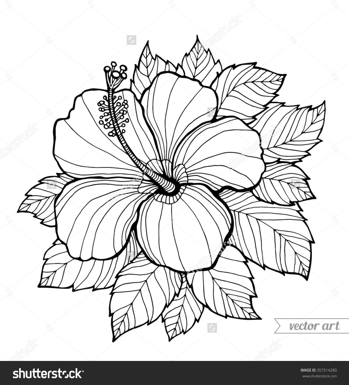 Stock Vector Hawaii Hibiscus Flower Leaf Aloha Hawaii Vector