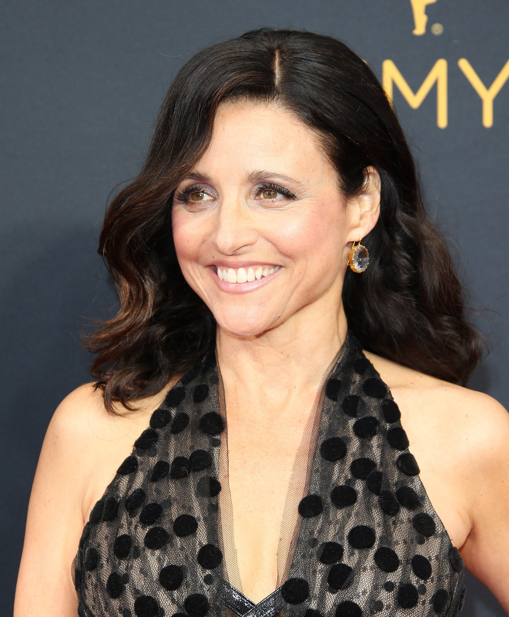 Julia Louis Dreyfus S Hair Evolution From Seinfeld To Veep Hair Evolution Julia Louis Dreyfus Womens Hairstyles