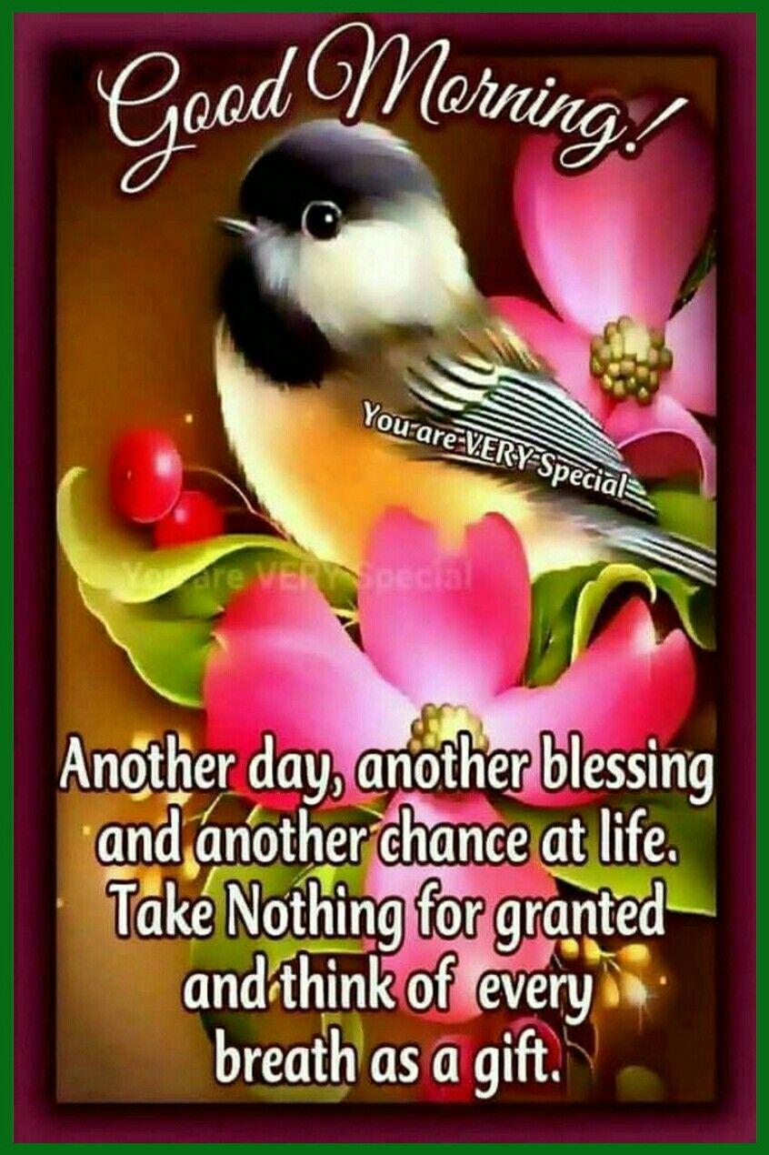 Good Morning Saved By Sriram Quotes Pinterest Good Morning