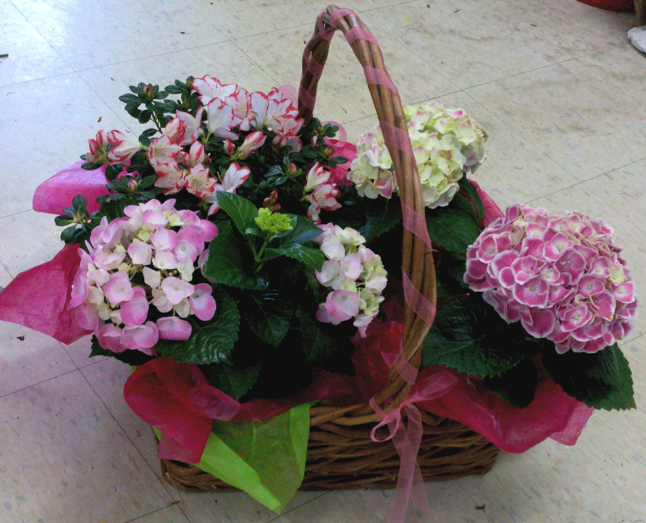 Basket i put together for my auntus birthday flowers pinterest