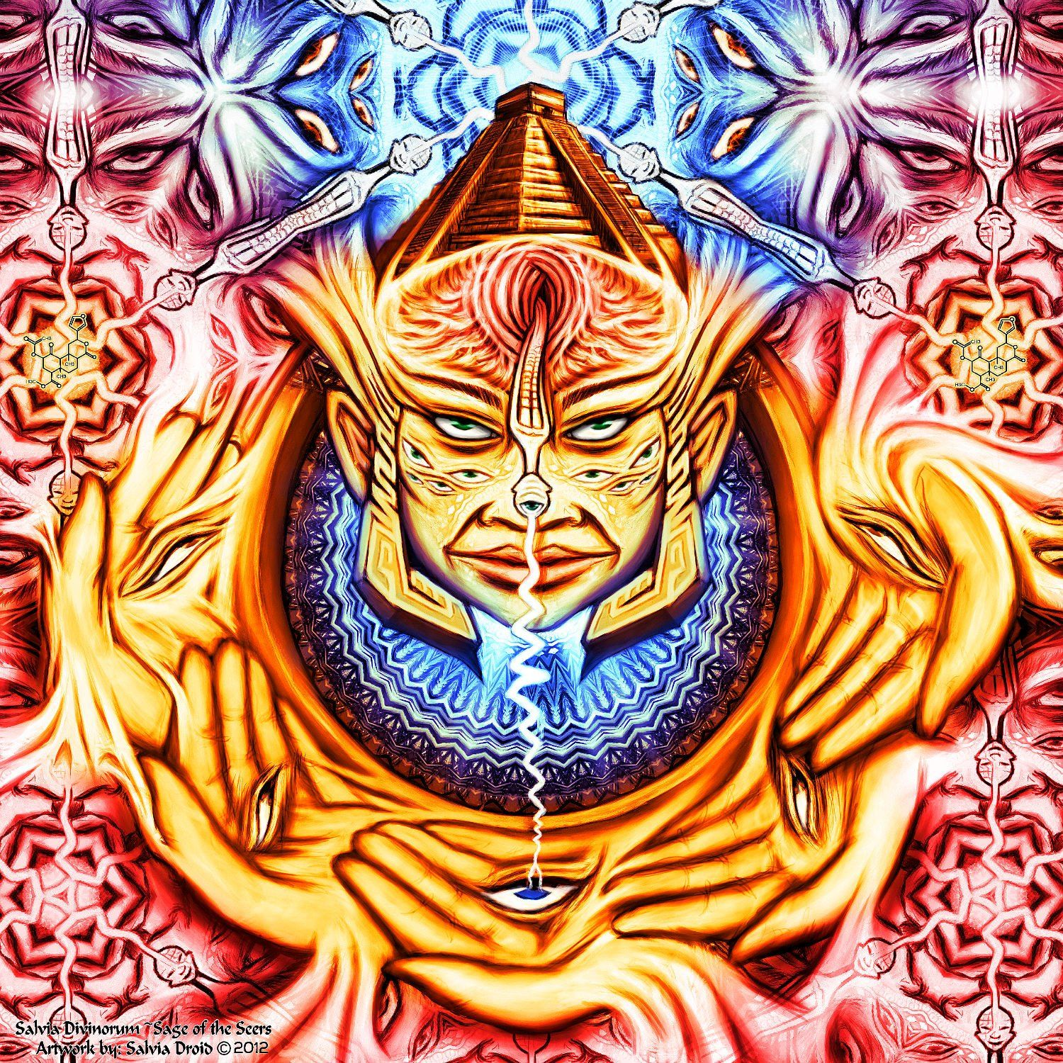 SalviaDroid - Member Art Galleries - Welcome to the DMT