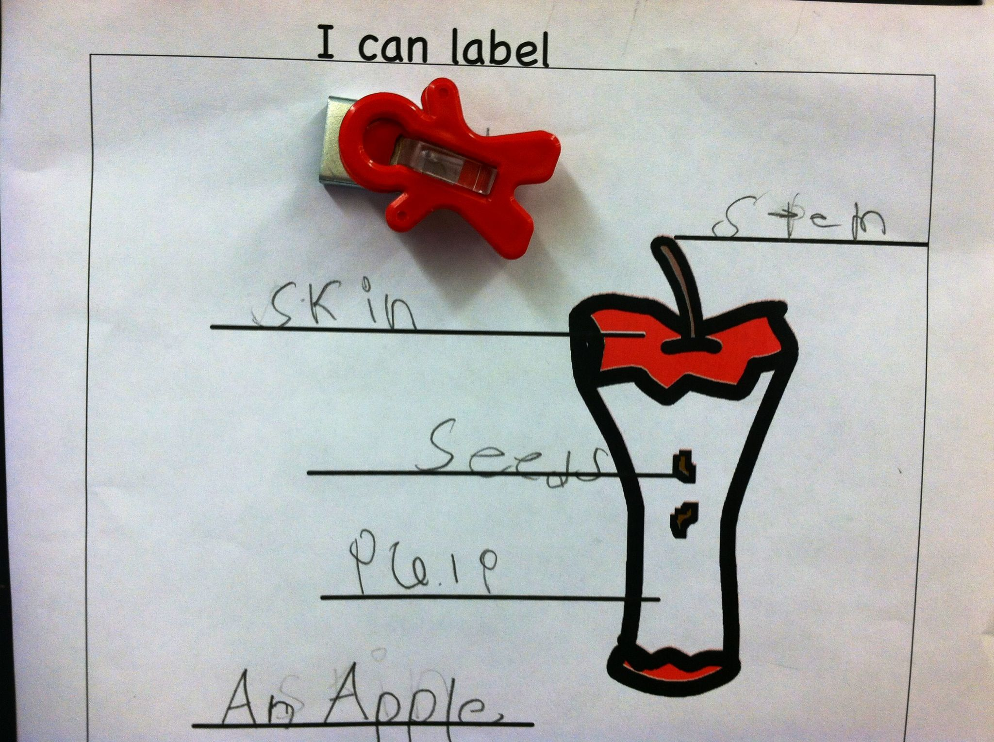 Labeling An Apple Writing Independently