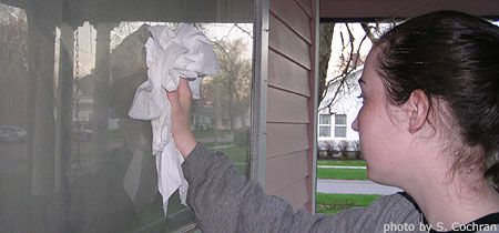 Managing House Dust Mites Home Environment I Have