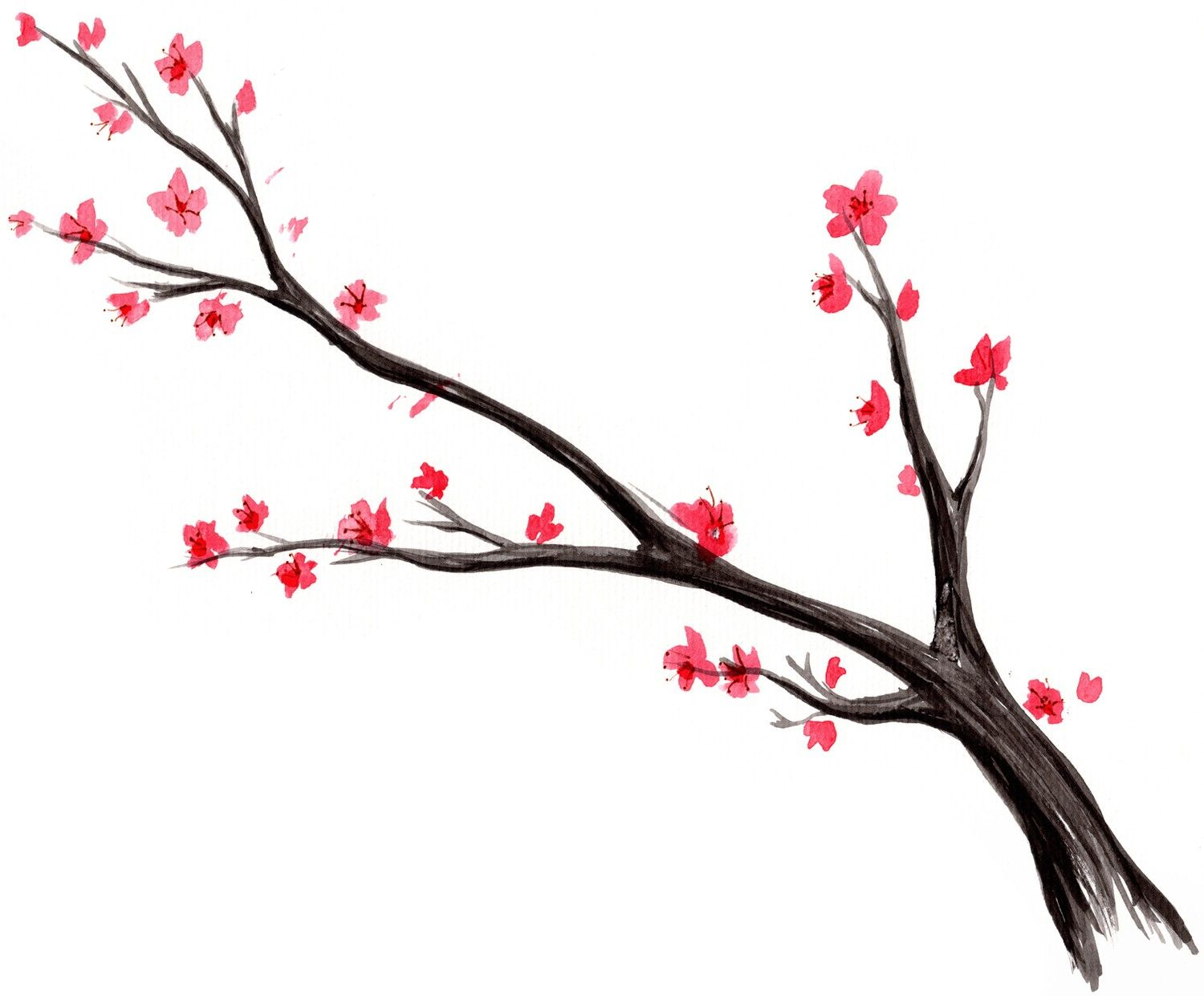 Add Birds Later Japanese Cherry Blossom Tree Watercolor 1