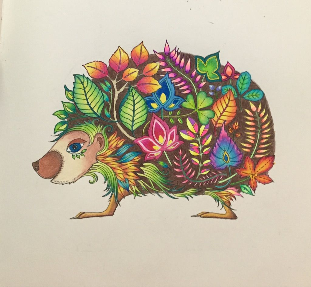 Hedgehog From Enchanted Forest Using A Mix Of Prismacolor Pencils And Gel Pens