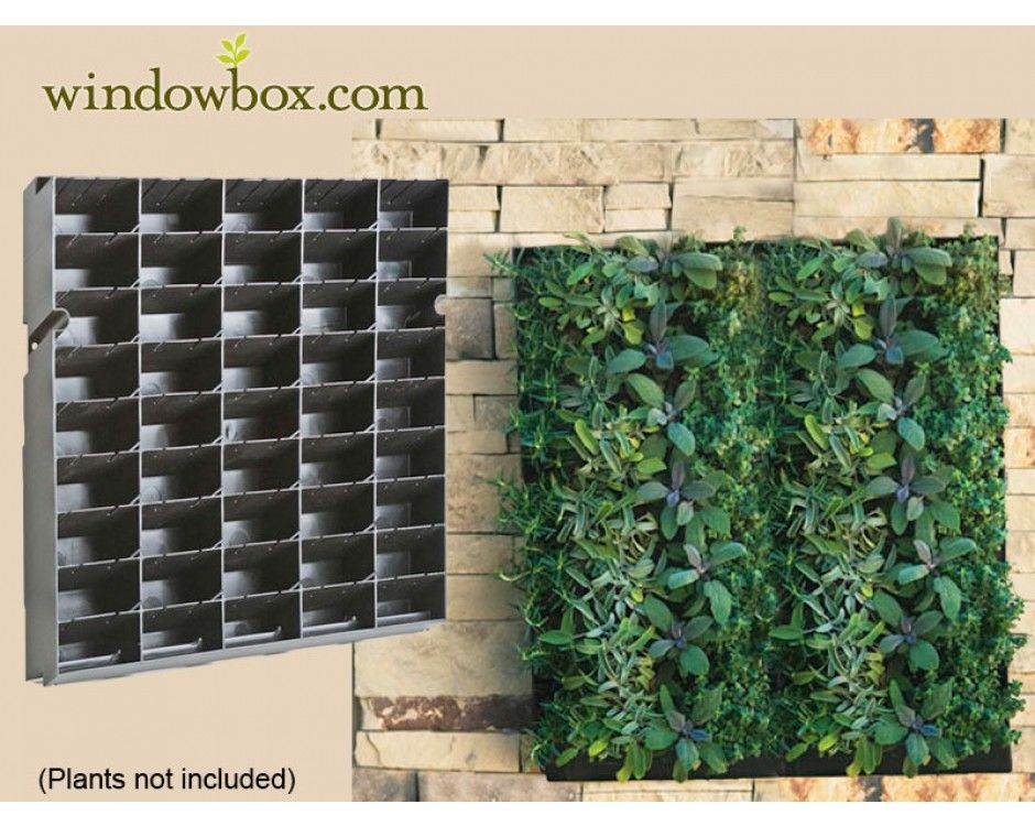 Large living wall planter 20 w x 20 h diy projects Green walls vertical planting systems