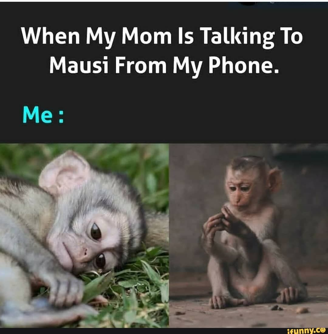 When My Mom Is Talking To Mausi From My Phone. - )