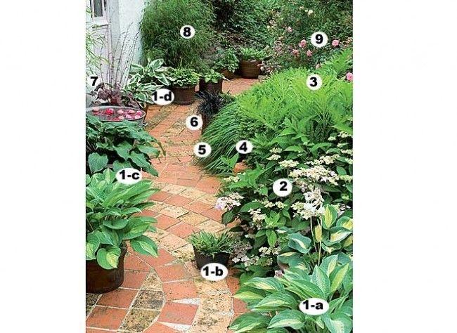 Comment aménager un jardin de ville | Jardin de ville, Jardin de et ...