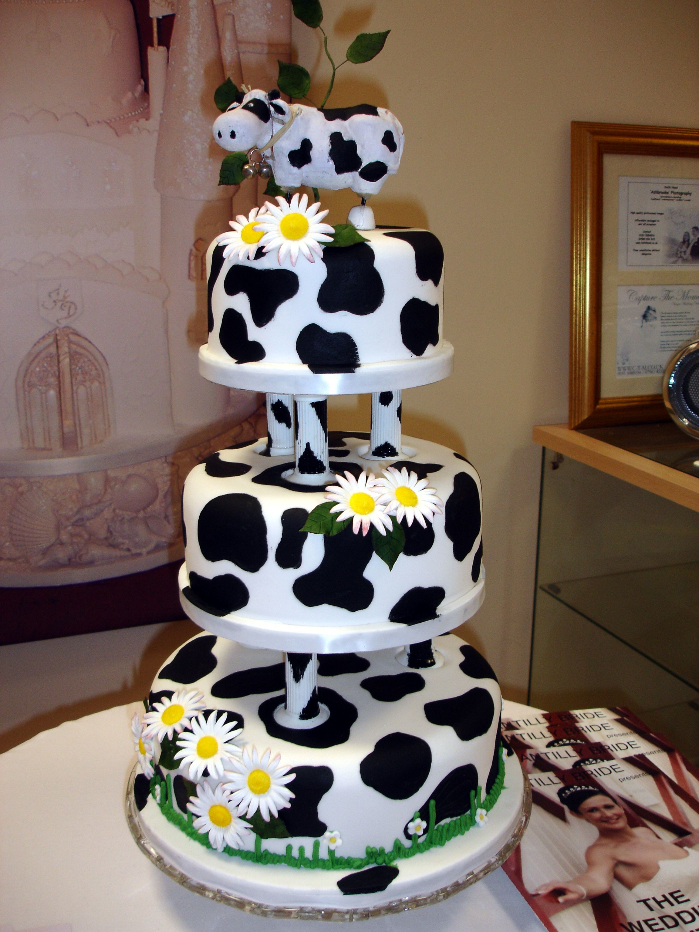 Cow Print Wedding Cake Desserts Pinterest Cow Print Cow And