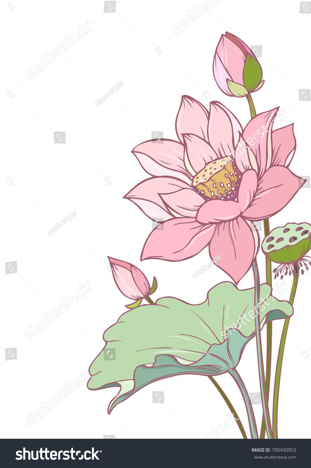 Ink pencil vector lotus sketch line art background hand drawn nature painting freehand sketching illustration ink wash painting