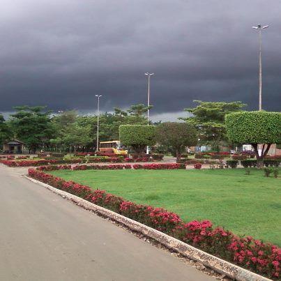 Trevo rodoviário em Curionópolis - PA, rodovia PA 275, saída para Parauapebas - PA. A chuva ameaçava estragar a viagem, mas em compensação, criou um cenário espetacular no contraste de corres entre as flores e o gramado do trevo, e cinza das nuvens carregadas.