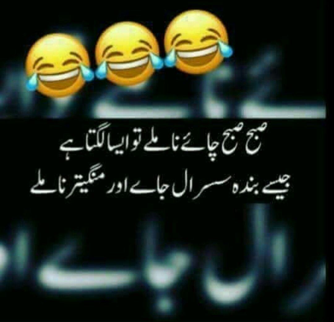 Hahahahaha right.....A.ß | Very funny jokes, Comedy quotes ...