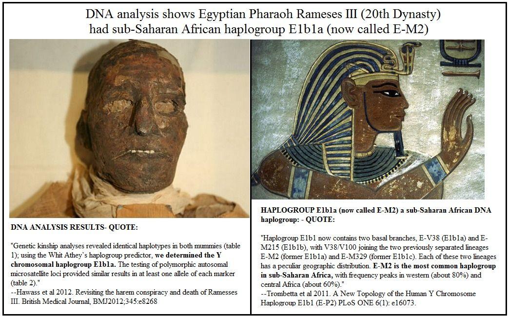 DNA results Rameses III shows African haplogroup