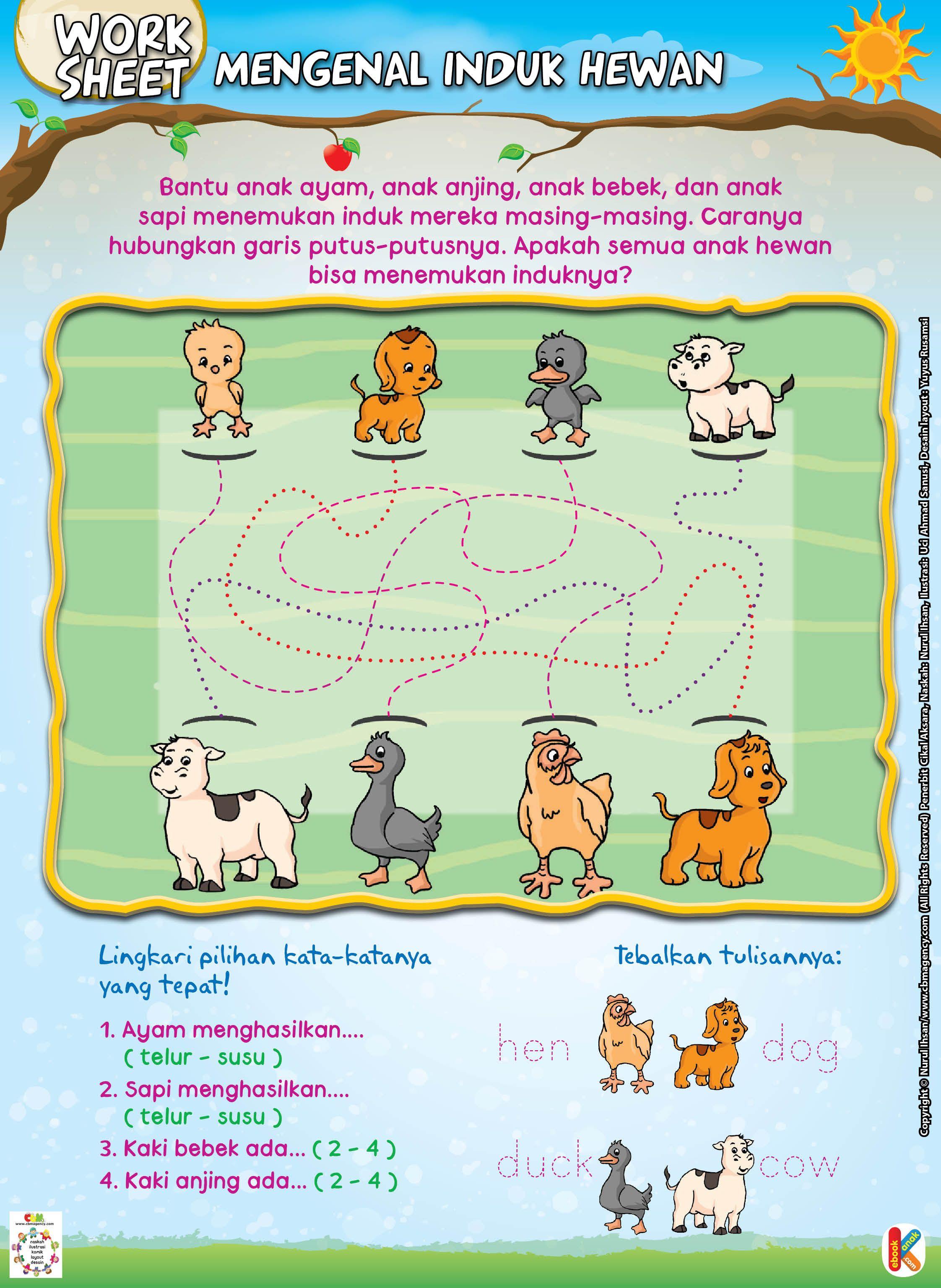 Mengenal Induk Hewan