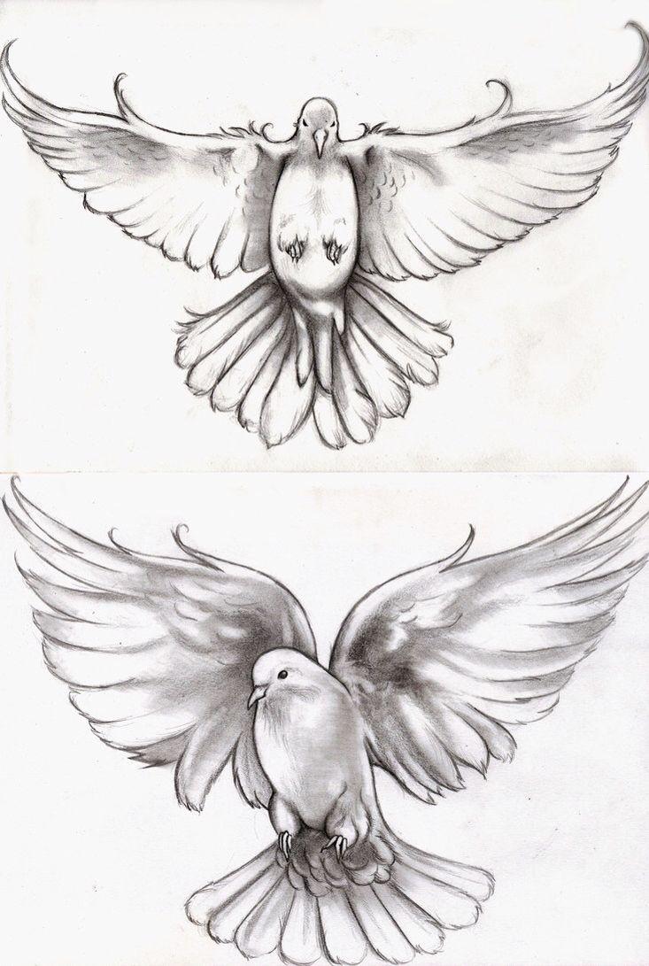 My Dove Tattoo Tatuagens De Pomba Tatuagens De Pomba Da Paz