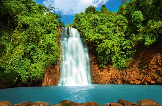 Tropical waterfall tropical waterfall 567 x 374 wallpaper tropical waterfall tropical waterfall 567 x 374 wallpaper voltagebd Image collections