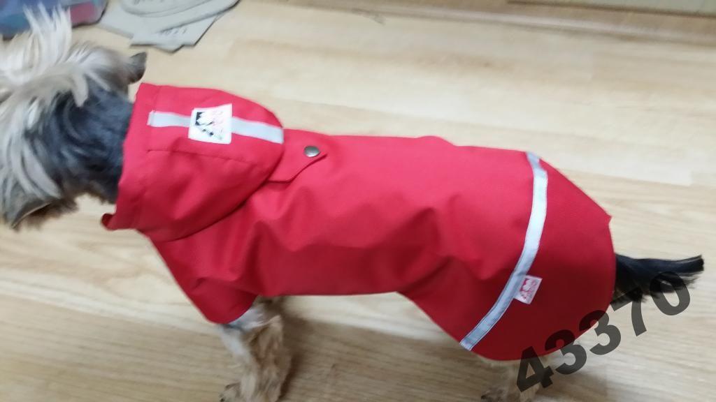 Pelo Super Peleryna Przeciwdeszczowa Kubraczek 4545145856 Oficjalne Archiwum Allegro Super Dogs Animals