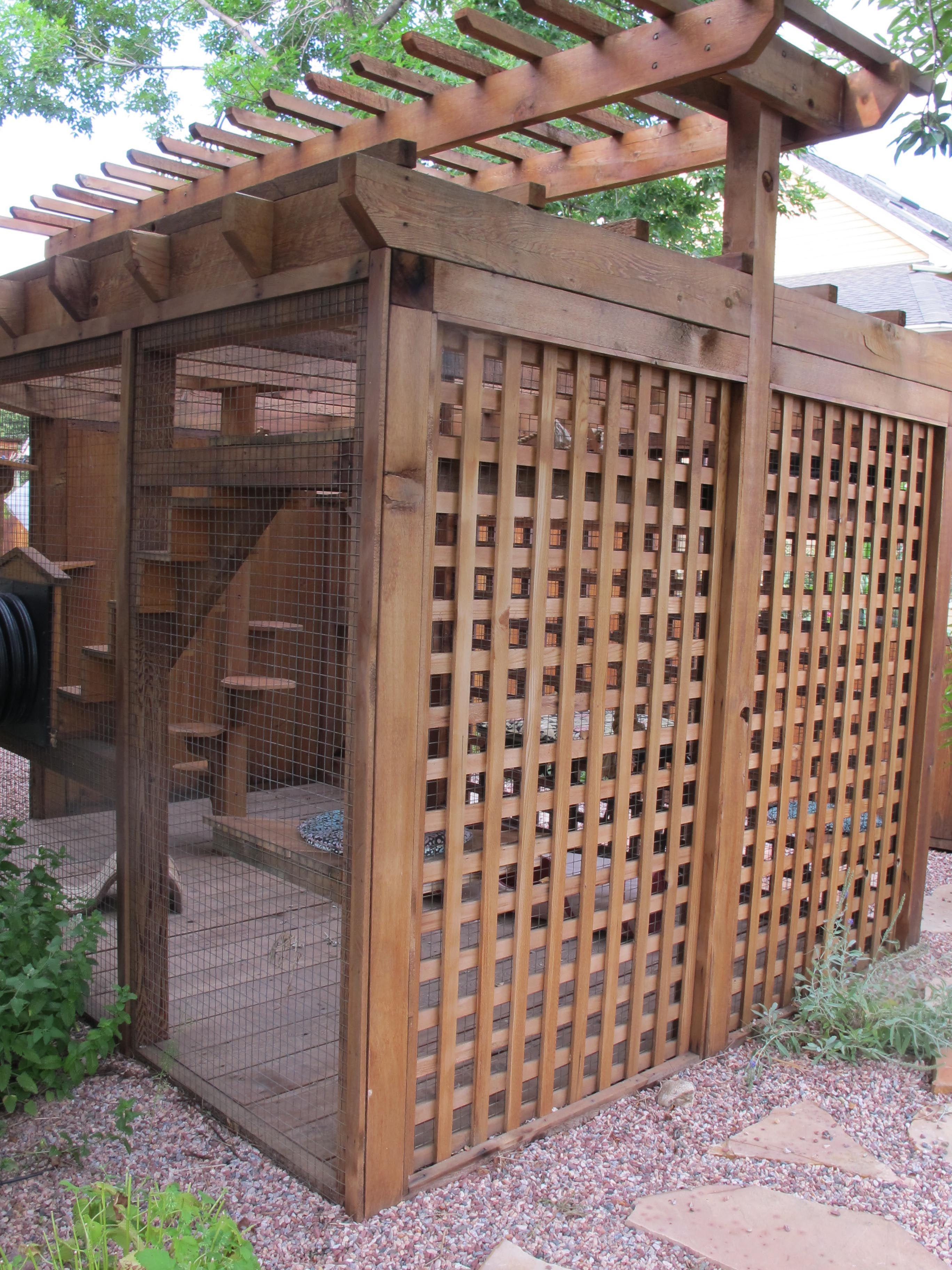 Exterior of cat enclosure Idée pour une partie avec une plante grimpante