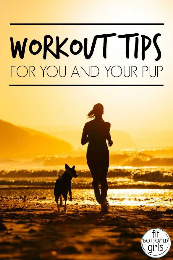 Workout Tips For You And Your Dog