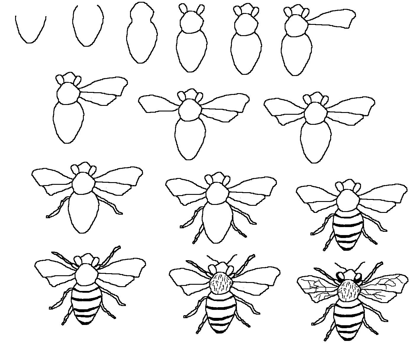 Line Art Step By Step : Tyler vo shows us how to draw a decent bee following lms