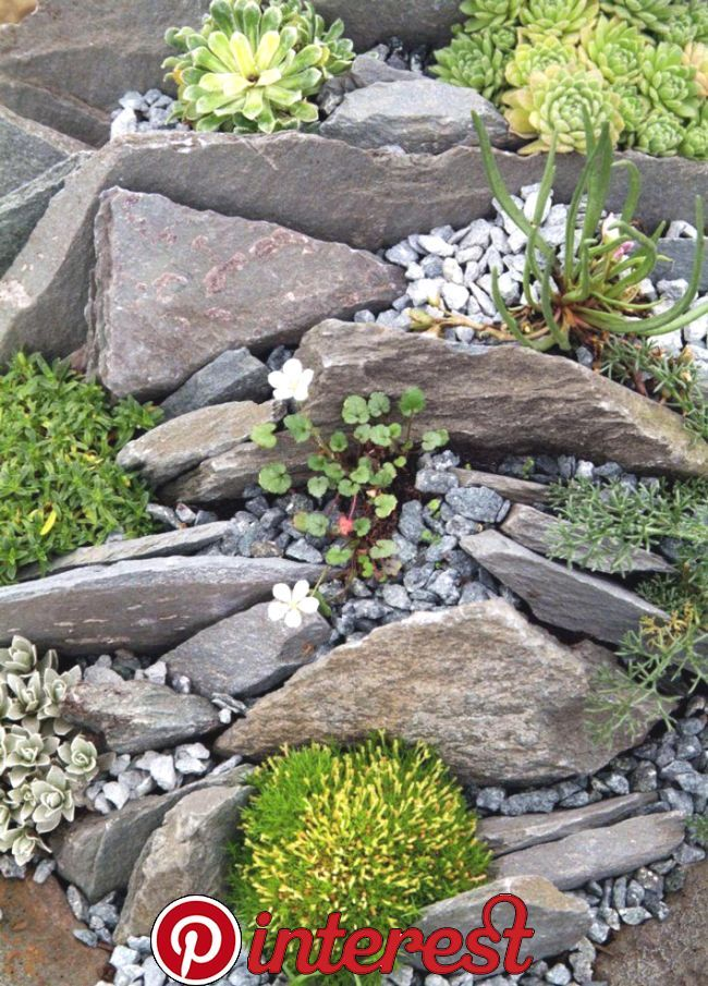 Beautiful Rock Garden Ideas Beautiful Rock Garden Ideas There Are