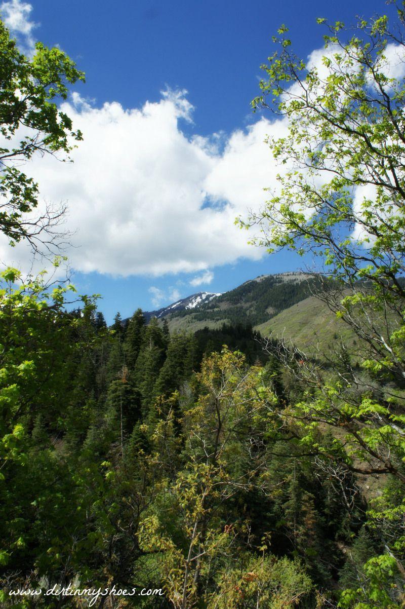 Hike! Utah - Payson Canyon