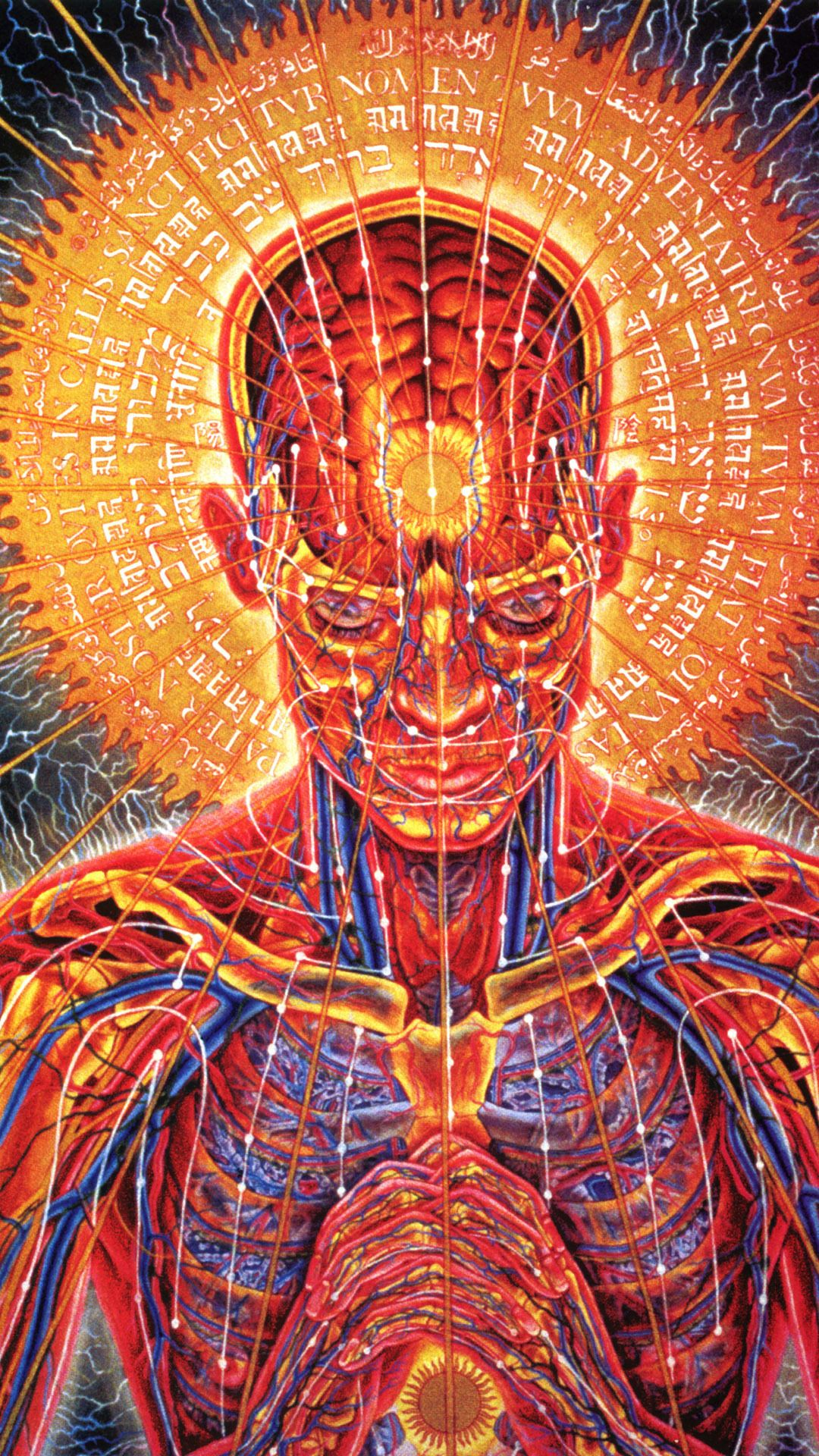 Psychedelic Anatomy Mobile Wallpaper 6122 Alex Gray Art