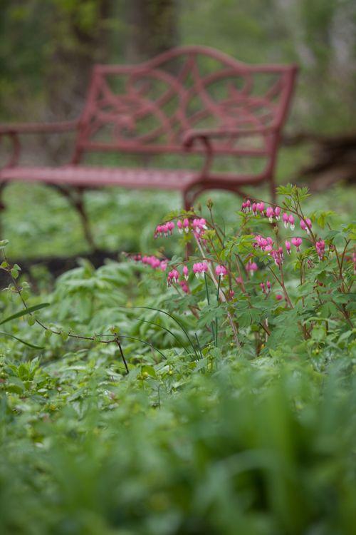 Pin Auf Historicka Zahrada Historical Garden Jardin Historique
