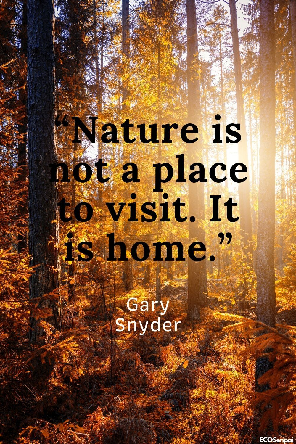 Environment Quotes About How Nature Is Important To Us And Is Our Second Home So Let S Care For Her Environment Quotes Environment Day Quotes Nature Quotes