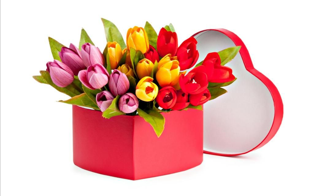 Bukiet Tulipanow Fresh Flower Delivery Flower Images Flower Delivery